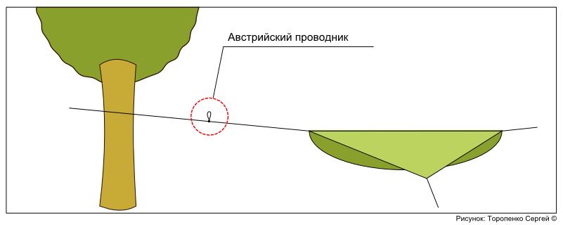 Схема: положение узла на верёвке